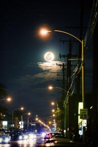 marina's moon.